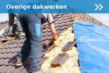 Overige dakwerken